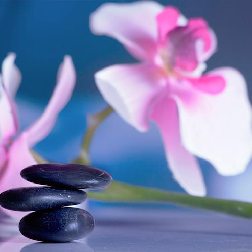 estel-centre-de-ioga